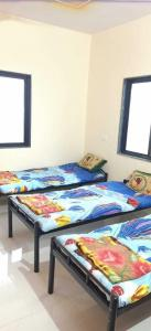 Bedroom Image of PG 4040547 Wagholi in Wagholi