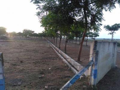 100 Sq.ft Residential Plot for Sale in Venkateswara Nagar, Rajahmundry
