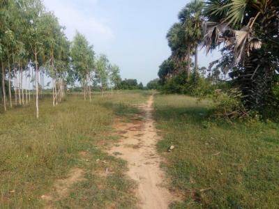 10230 Sq.ft Residential Plot for Sale in Kanchipuram, Chennai