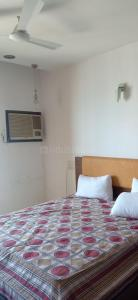 Gallery Cover Image of 2300 Sq.ft 4 BHK Apartment for rent in Worli for 225000