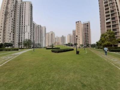 Gallery Cover Image of 1760 Sq.ft 3 BHK Apartment for rent in PI Greater Noida for 14500