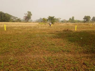 Gallery Cover Image of  Sq.ft Residential Plot for buy in Thakurpukur for 450000