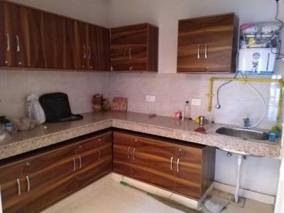 Gallery Cover Image of 1185 Sq.ft 2 BHK Apartment for rent in Phase 2 for 8500