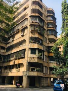 Gallery Cover Image of 800 Sq.ft 1 BHK Apartment for rent in Nerul for 24000