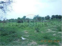 490 Sq.ft Residential Plot for Sale in Acher, Ahmedabad