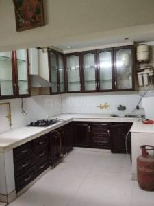 Kitchen Image of Mannat PG in Sector 16