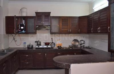 Kitchen Image of Suhag House in Sector 39