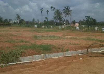 160000 Sq.ft Residential Plot for Sale in Mahalunge, Pune