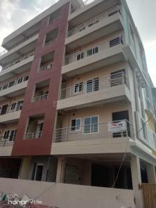 Gallery Cover Image of 550 Sq.ft 1 BHK Apartment for rent in Doddakannelli for 14000