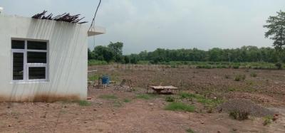 99000 Sq.ft Residential Plot for Sale in Bhogpur, सोलन