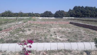 1440 Sq.ft Residential Plot for Sale in Rahimabad, Lucknow