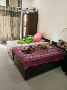 Bedroom Image of PG 3885057 Dlf Phase 5 in DLF Phase 5