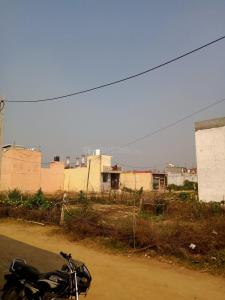 Gallery Cover Image of 1000 Sq.ft Residential Plot for buy in Sector 71 for 1000000