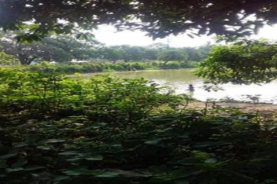 99000 Sq.ft Residential Plot for Sale in Chowrangee, Ashoknagar Kalyangarh