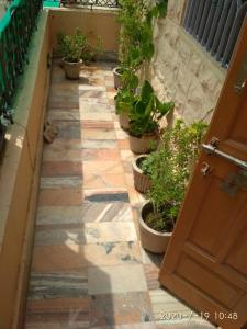 Gallery Cover Image of 1200 Sq.ft 2 BHK Independent House for rent in Chopasni Housing Board for 9000