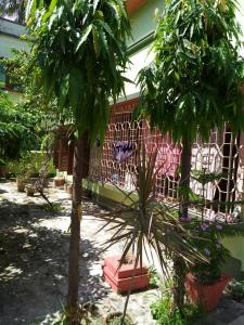 Gallery Cover Image of 2500 Sq.ft 3 BHK Independent House for rent in Belghoria for 10000