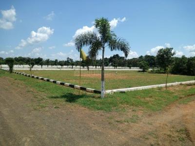 183 Sq.ft Residential Plot for Sale in Morampudi, Rajahmundry