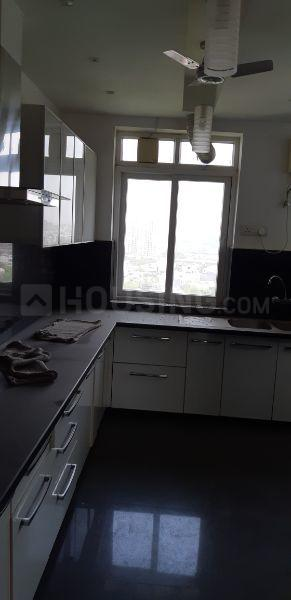 Kitchen Image of 1750 Sq.ft 4 BHK Apartment for rent in DLF Phase 3 for 45000