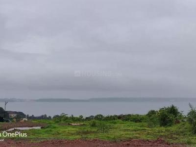 435 Sq.ft Residential Plot for Sale in Bambolim, Goa