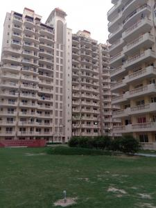 Gallery Cover Image of 1265 Sq.ft 3 BHK Apartment for rent in Sector 70 for 9000