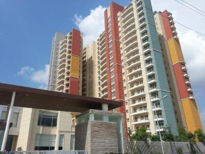 Gallery Cover Image of 1320 Sq.ft 2 BHK Apartment for rent in BPTP The Resort, Sector 75 for 14000