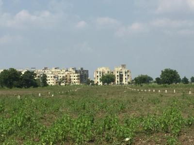 Gallery Cover Image of  Sq.ft Residential Plot for buy in Gotal Pajri for 1750000