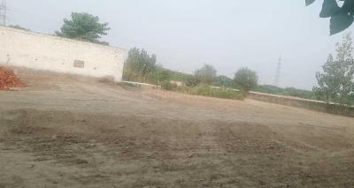 Gallery Cover Image of 900 Sq.ft Residential Plot for buy in Sector 137 for 2200000