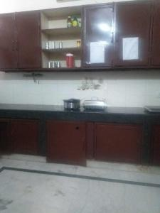 Kitchen Image of Bird House PG in DLF Phase 1
