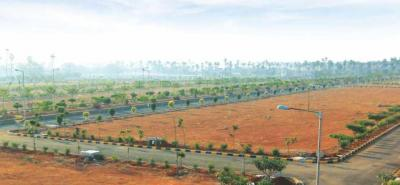 Gallery Cover Image of  Sq.ft Residential Plot for buy in Shamshabad for 13260000