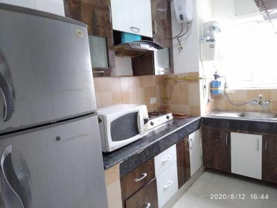 Gallery Cover Image of 1250 Sq.ft 2 BHK Apartment for rent in Parsvnath Platinum, PI Greater Noida for 9000