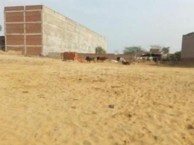Gallery Cover Image of  Sq.ft Residential Plot for buy in Sector 51 for 450000