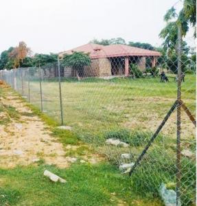 450 Sq.ft Residential Plot for Sale in Garhi Harsaru, Gurgaon
