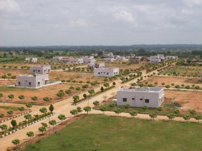 250 Sq.ft Residential Plot for Sale in Yeida, Greater Noida