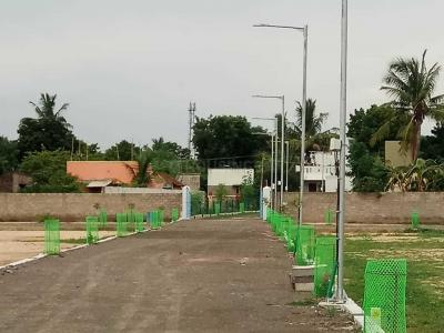Gallery Cover Image of  Sq.ft Residential Plot for buy in Thirunindravur for 1350000