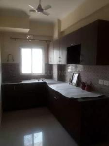 Gallery Cover Image of 1350 Sq.ft 3 BHK Apartment for rent in Sector 43 for 19000