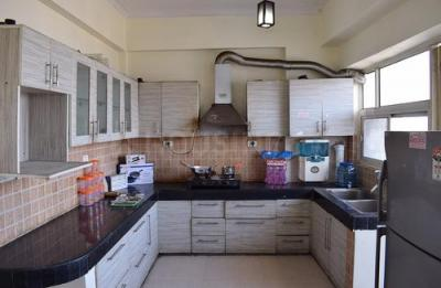 Kitchen Image of Wadhawan House in Sector 39