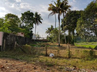 10500 Sq.ft Residential Plot for Sale in Thiruvalla, Pathanamthitta
