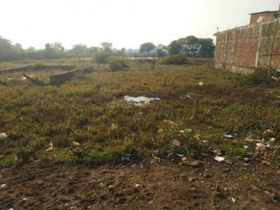 Gallery Cover Image of 2000 Sq.ft Residential Plot for buy in Gorakhpur for 3000000