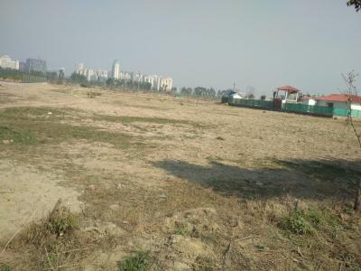 9081 Sq.ft Residential Plot for Sale in Sector 133, Noida