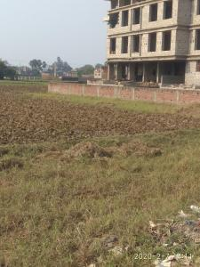 1361 Sq.ft Residential Plot for Sale in Kidwaipur Postal Colony, Patna