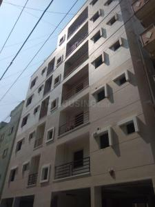 Gallery Cover Image of 600 Sq.ft 1 BHK Apartment for rent in Marathahalli for 14600