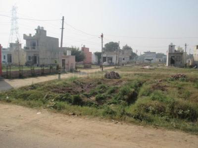 900 Sq.ft Residential Plot for Sale in Jharoda Kalan, New Delhi