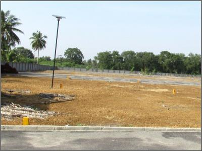 Gallery Cover Image of  Sq.ft Residential Plot for buy in Keeranatham for 1350000