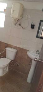 Common Bathroom Image of Seperate Room In 3 Bhk in Noida Extension