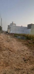 Gallery Cover Image of 594 Sq.ft Residential Plot for buy in Sector 66 for 990000