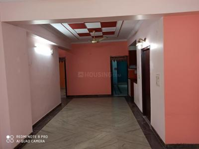 Gallery Cover Image of 1900 Sq.ft 3 BHK Apartment for rent in Amrapali Green, Vaibhav Khand for 20000