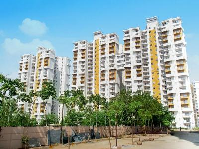 Gallery Cover Image of 1576 Sq.ft 3 BHK Apartment for buy in Neharpar Faridabad for 4790000