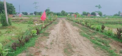 450 Sq.ft Residential Plot for Sale in Neharpar Faridabad, Faridabad