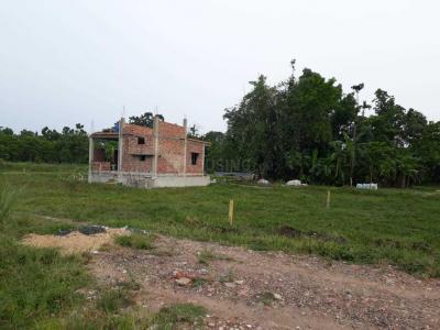 Gallery Cover Image of  Sq.ft Residential Plot for buy in Joka for 225000