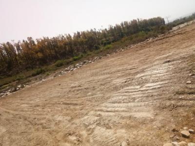 900 Sq.ft Residential Plot for Sale in Phulsani, Dehradun